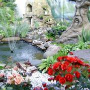 фонтан и розы